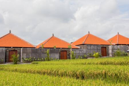 Classy private resort in rice field