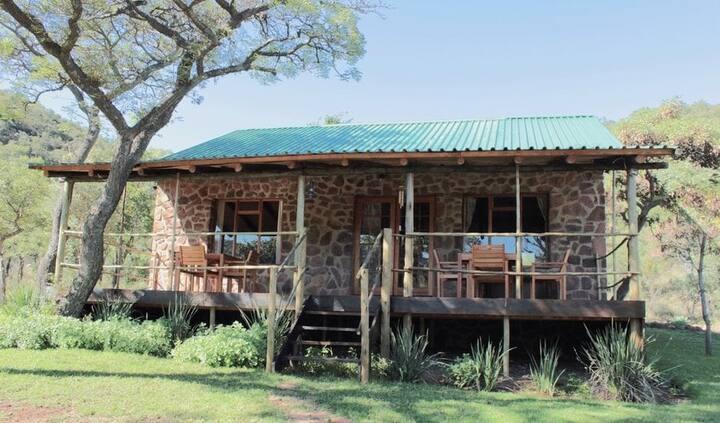 Hope Springs Eternal - The Bush Lodge