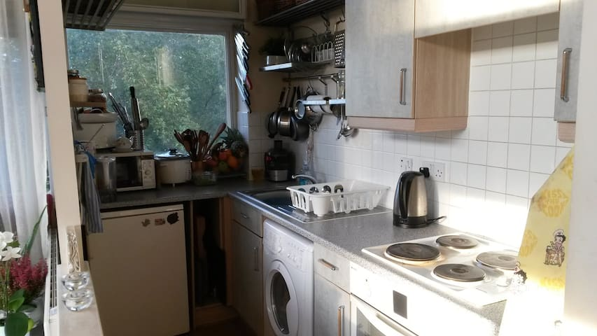 Lovely room in the heart of London - London - Apartment