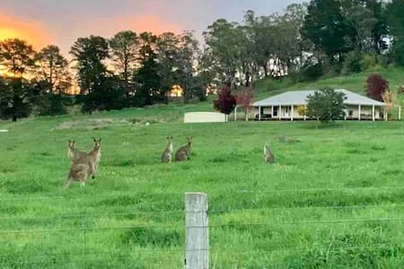 """""""The Back Paddock"""" Only 5 mins from Oranges CBD"""