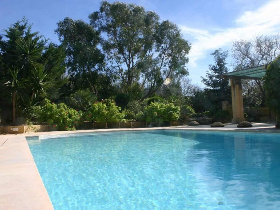 Lush greenery and beautiful gardens surround a large pool.
