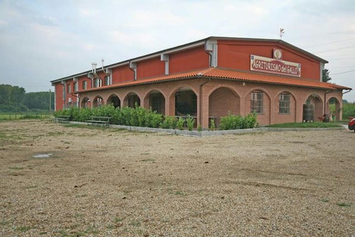 B&B campo allenamenti juventus - Vinovo - ที่พักพร้อมอาหารเช้า