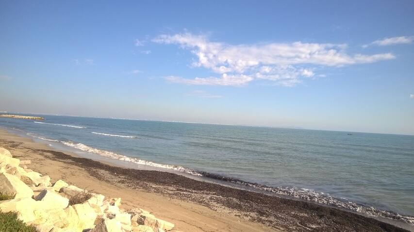 Beau F2  bord de plage - Hammam Lif - Apartment