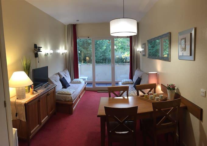 Appt confortable, vue sur montagne - Saint-Lary-Soulan - Apartment