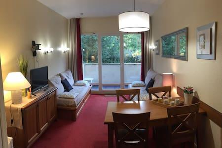 Appt confortable, vue sur montagne - 聖拉里蘇朗(Saint-Lary-Soulan) - 公寓