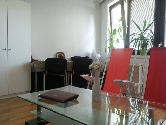 Fully Furnished Room with balkony - Wien - Huoneisto