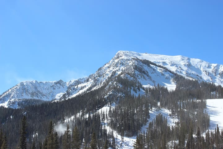 Wheeler Peak Condo