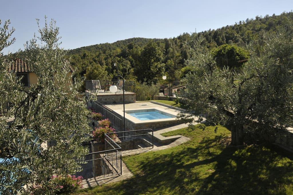 Vasca a idromassaggio inserita tra gli olivi a disposizione degli ospiti nel periodo estivo