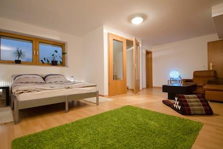 Unique Munich apartment, big garden - Olching