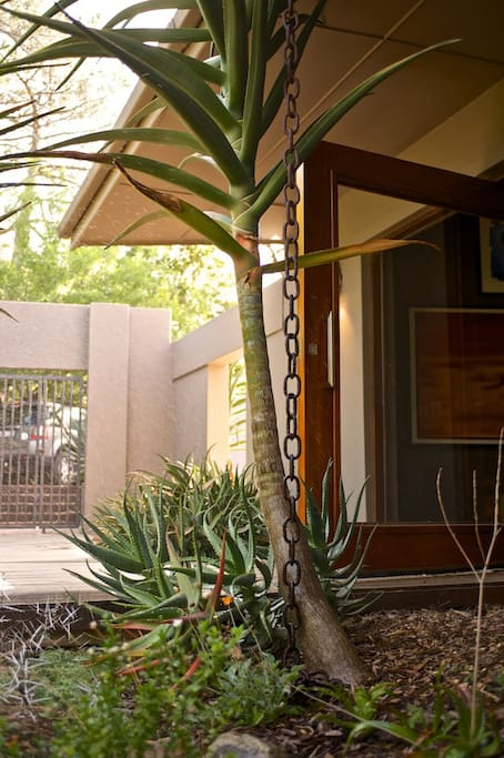 The entrance to our home, from the secure driveway with automated gate & off street parking for 3 cars