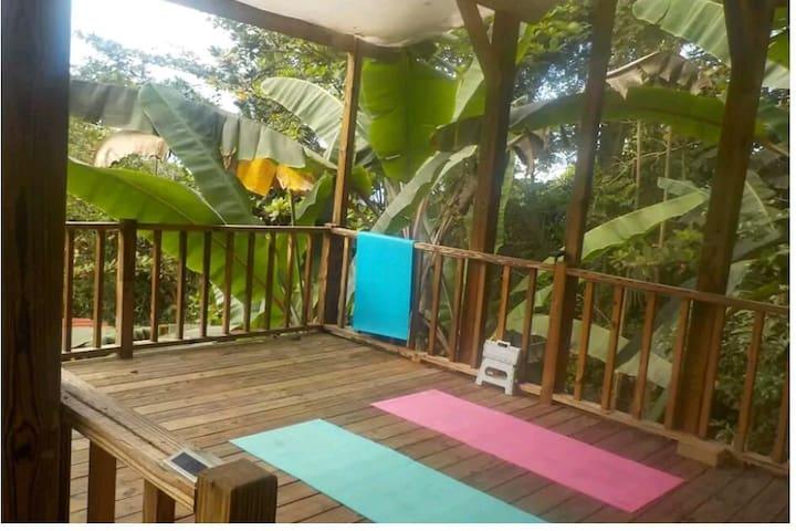 Samatahiti, A Surf Yoga Hostel