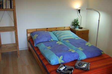 Ruhig und zentral; 1 Zimmer Wohnung - Zwickau - Flat