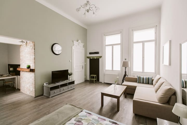 Beautiful spacious apt in Budapest's very heart
