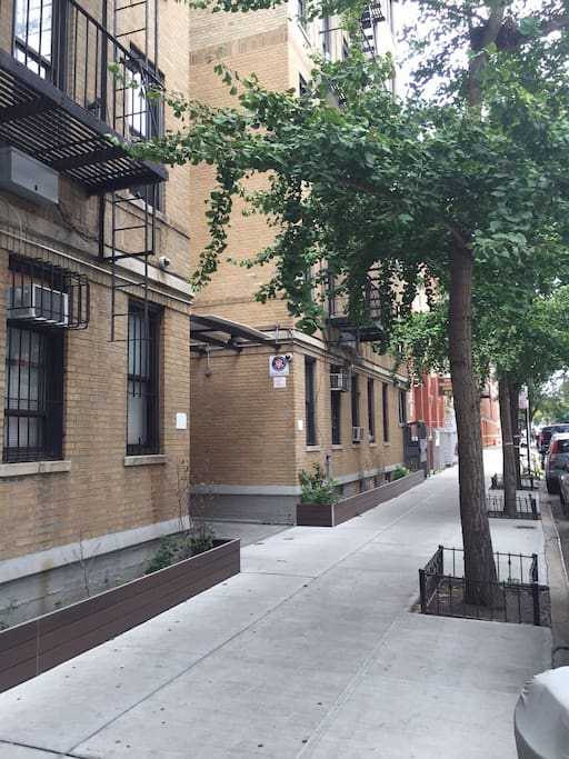 Quiet Tree Lined Street .. Very Safe only 3 blocks away from the 2/3 Express Train. Only 15 minutes to Times Square.