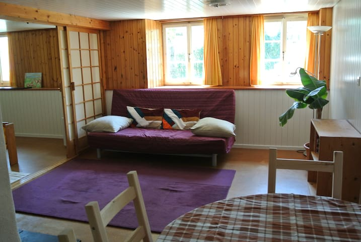 Swiss holiday flat with fireplace - Heiden - Wohnung