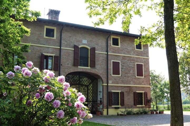 B&B Le Noci di Feo - Room Tulipani - Modena - Modena - Bed & Breakfast