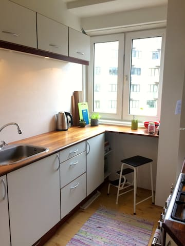 Nice and quiet 2 room apartment in great location