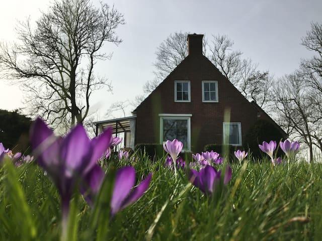 Westerweg landelijke vakantiewoning - Eenrum - Houten huisje