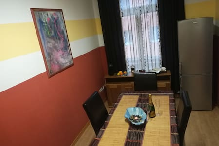 Vintage Style Apartment in Maribor City Center
