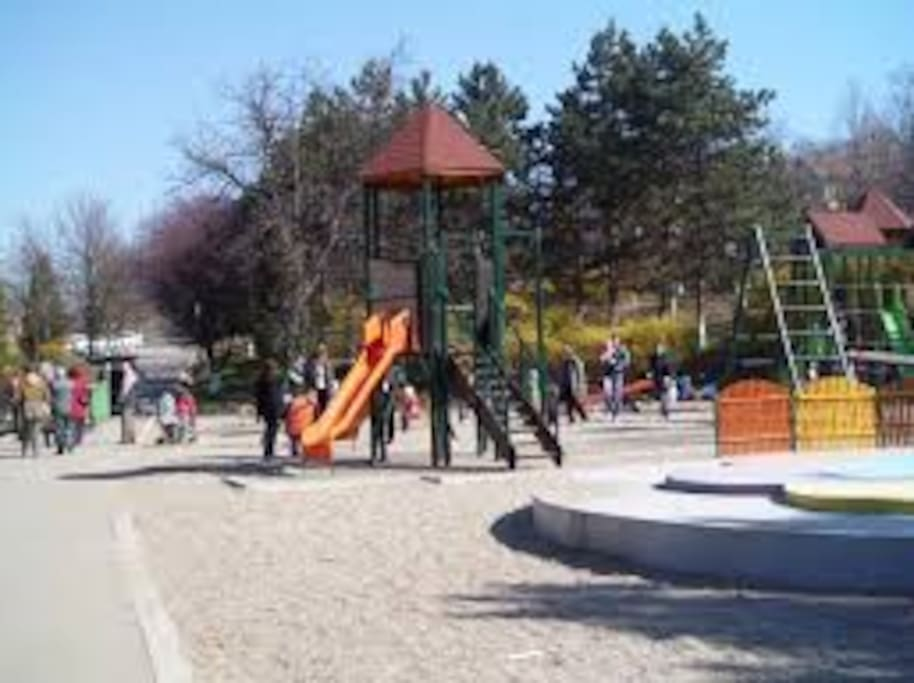 Playground in the Central Park