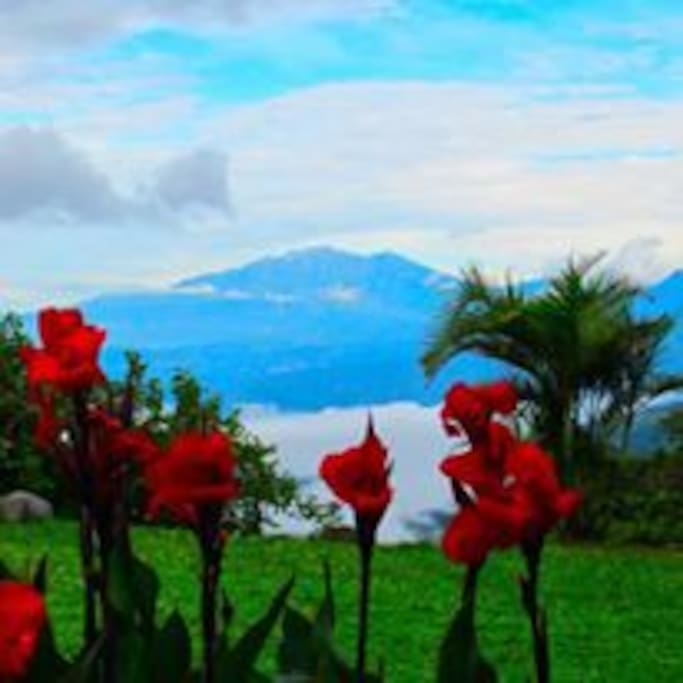 Volcan Baru, view from the garden