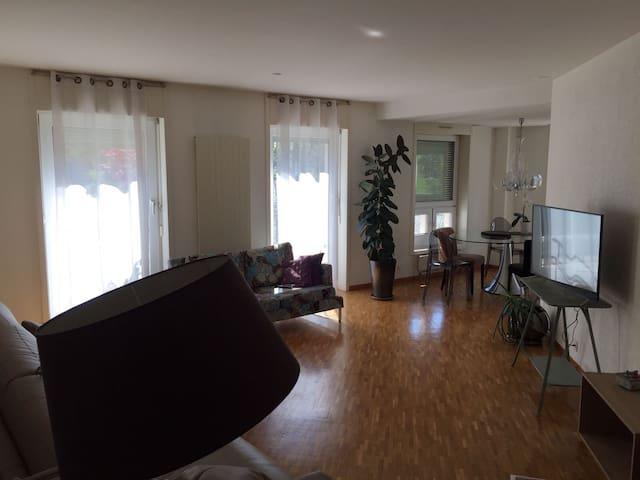 Nice apartment in Geneva - Ženeva - Byt