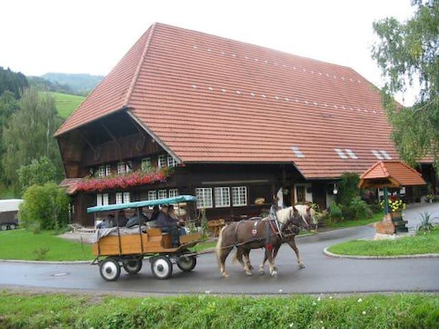 Doppelzimmer im Rommelehof - Gutach (Schwarzwaldbahn) - Inap sarapan