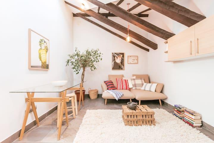 Bohemian 2bedroom attic in Lavapies