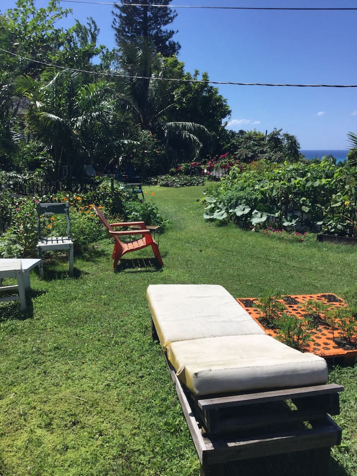 Rooftop Garden  ( 2000 sq feet)with ocean view above spacious , private  one bedroom apartment