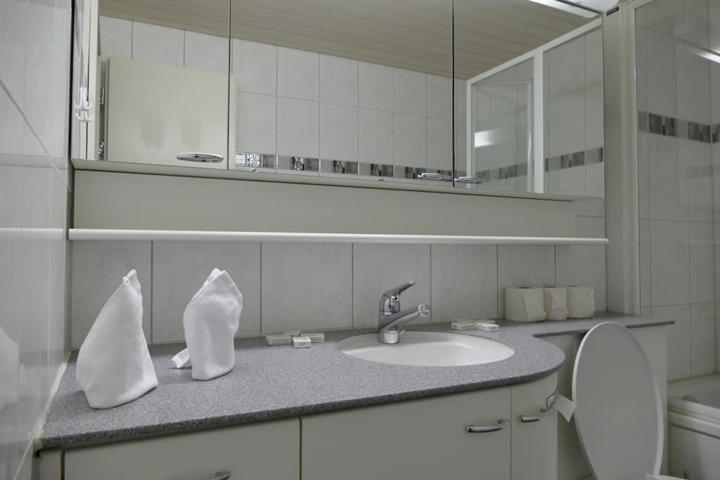 Bathroom with bath/ shower and toilet