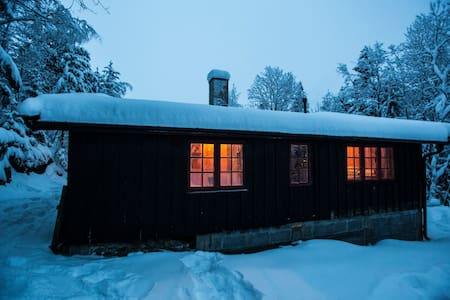 Winter Wonderland of Oslo (with parking!) - Lunner - Cabin