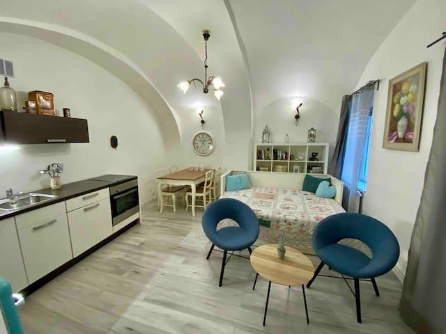 Apartmány  Kováčska - Vintage apartment