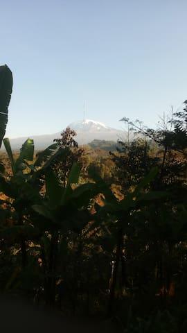 Kilimanjaro guestsI