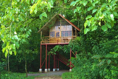 Rainforest Tree House2 with Hot Springs - Domek na drzewie