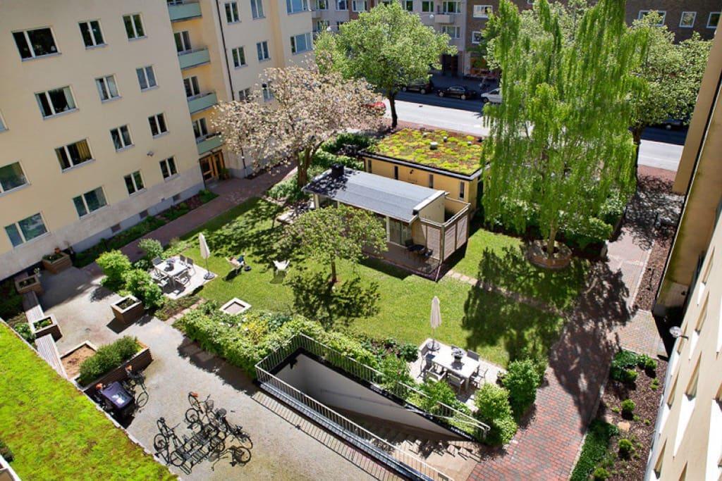 The beautiful garden of the association.