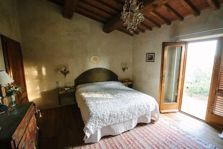 Ulivo in La Casa in Chianti o di San Donato