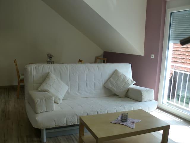 Gemütliche Ferienwohnung im Kraichgau - Östringen - Apartament