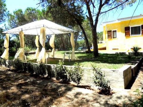 Casa la taverna, immersa in contesto naturalistico ,  a  400 metri dalla spiaggia di San Pietro a mare, Valledoria.