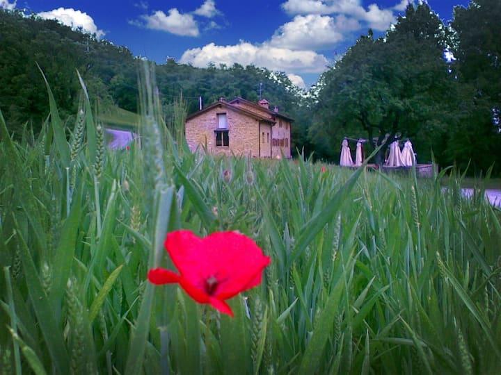 Cartiera of the Benandantis Farmhouse - Room PERE