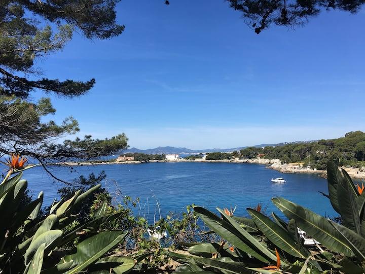 """""""Poésie"""" Bel appartement situé au coeur de Cannes"""