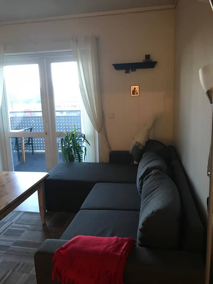 Apartment just 30 minutes away from Oslo center!