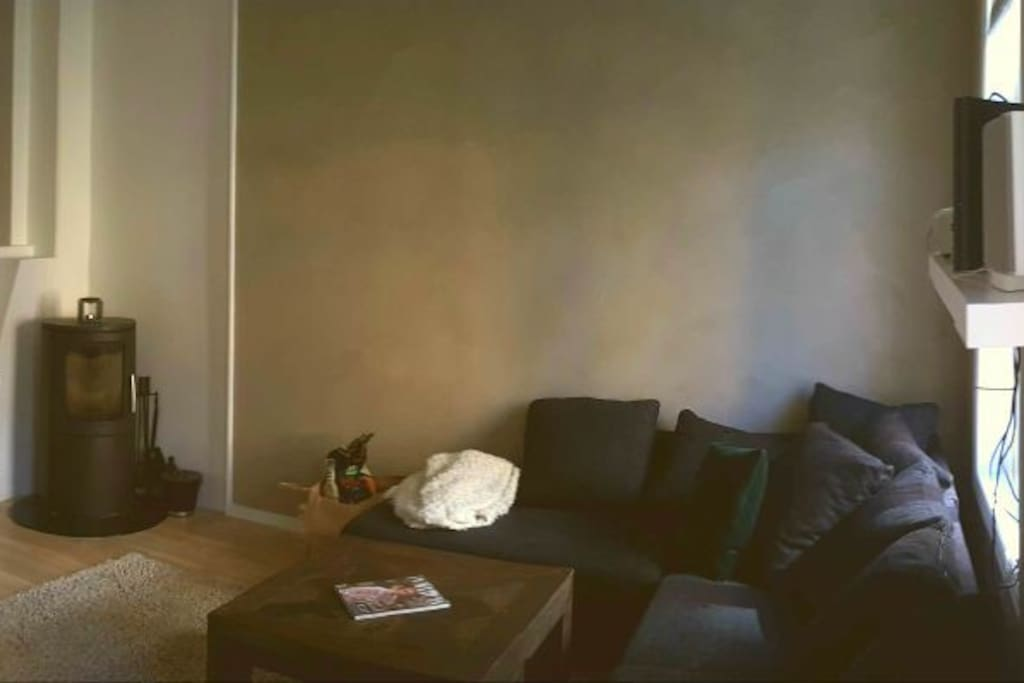 This is the large living room with an equally large couch :D also has a fireplace