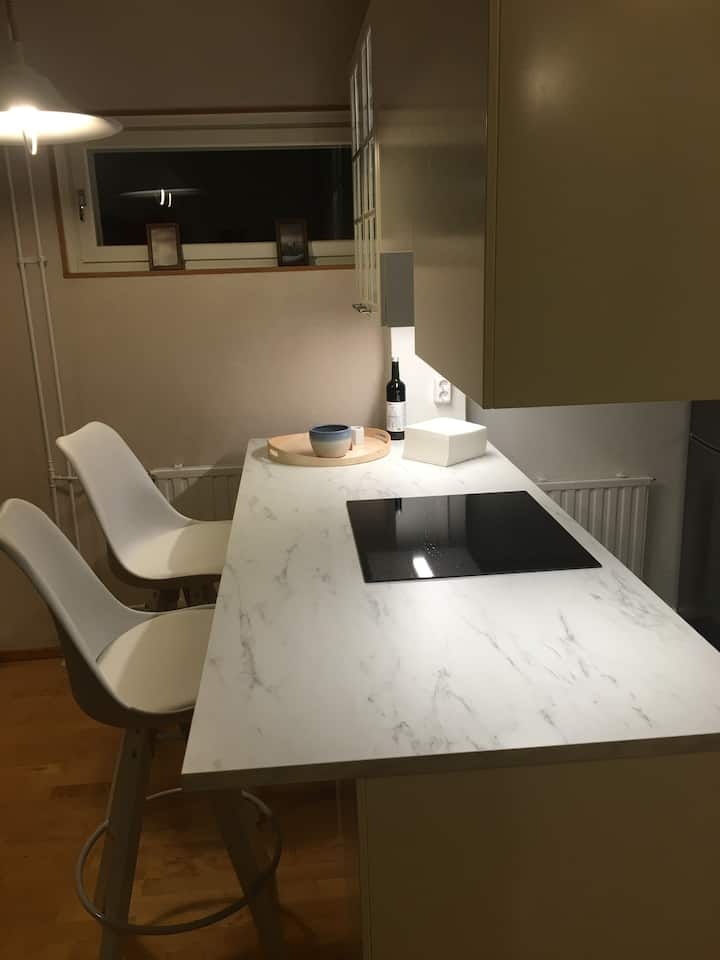 4 person apartment near Helsinki downtown