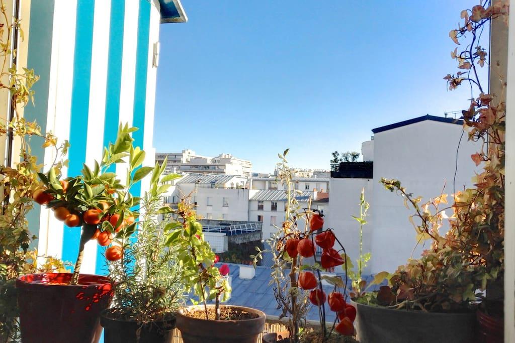 Vue sur les toits de Paris depuis la cuisine