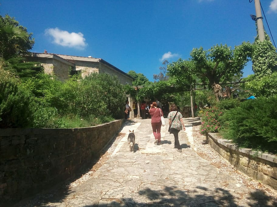 Path to Guest House