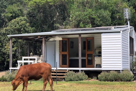 Private Noosa Hinterland cabin (pet friendly)