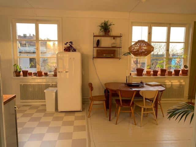 Bright beautiful apartment on Stora Essingen