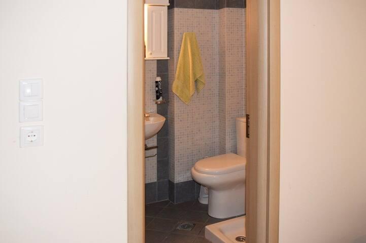 Level 1:Master's bedroom bathroom.
