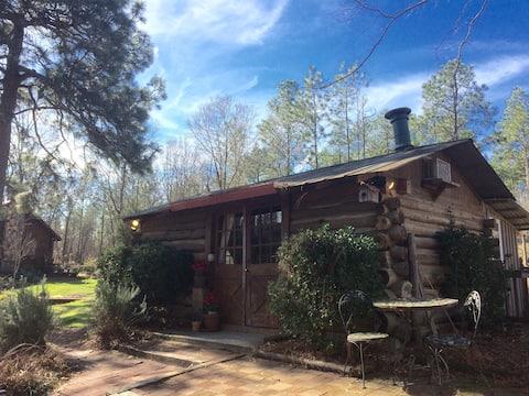Congaree Vines - Rustic Log Cabin on a Vineyard!