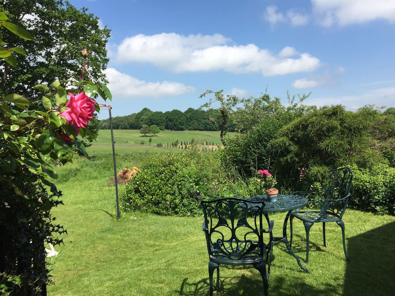Clock House Cottage, Angley Park, Cranbrook - Guesthouses for Rent ...